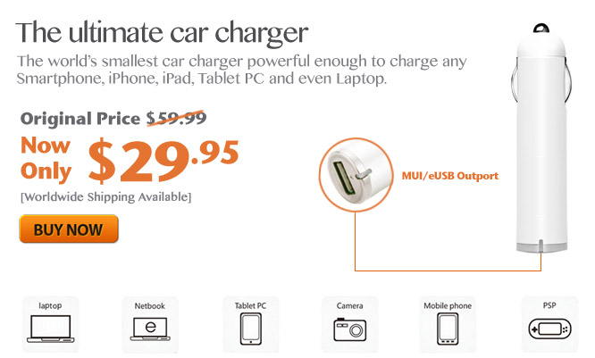 World Smallest Car Charger